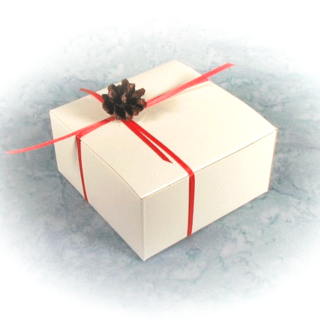 pine cone and red ribbon box